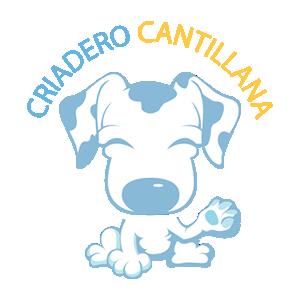 Criadero de Perros en Sevilla